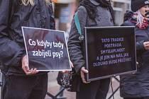 V Českých Budějovicích se konal 21. 12. 2019 protest proti zabíjení kaprů. Akci uspořádal spolek Společný svět. Foto: Lucie Procházková