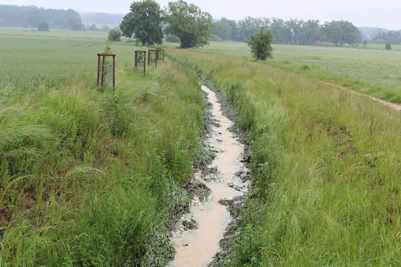 Vytrvalé srážky naplnily na Českobudějovicku i strouhy mezi poli. Na snímku vodoteč u Křenovic, která ústí do rybníku Vyšatov.