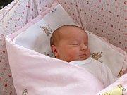 Anička Chmelová přišla na svět 20. 10. 2017, její porodní váha byla 3,89 kilogramu. Doma se na ni těšili sedmiletá Pavlínka a pětiletý Jiříček. Spolu s  nimi a rodiči bude  trávit své dětství v Lišově.