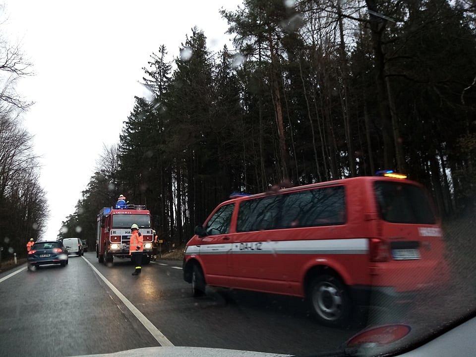 Před Lišovem ve směru od Českých Budějovic spadl strom na silnici a jeden byl nalomený. Doprava zde asi půl hodiny stála, než hasiči překážku odstranili.