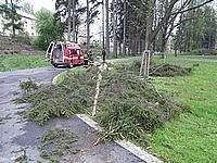 Bouře v pondělí večer polámala na jihu Čech jen pár stromů (ilustrační snímek).