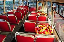 Růže si u příležitosti Mezinárodního dne žen přichystal pro své cestující Dopravní podnik.
