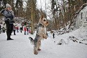 O víkendu proudily do Terčina údolí davy turistů, kteří se chtěli pokochat pohledem na zamrzlý vodopád.