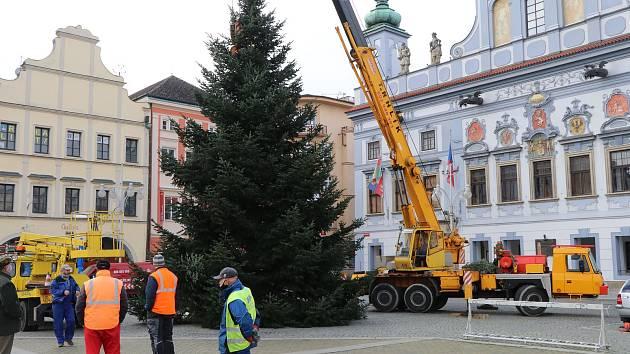 Vánoční strom pro České Budějovice.