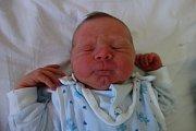 Petra a Jiří Svobodovi z Č. Budějovic jsou hrdými rodiči Vojtěcha Svobody. Chlapeček vážící 3,52 kg se narodil 18. 7. 2016 v 10.00 h. Doma na něj čeká tříletá sestřička Eliška.