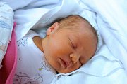 Do Loučovic si maminka Kristýna Diószegiová odvezla prvorozenou Emilly Diószegiovou. Na svět přišla 17. 12. 2018 v 15.17 h. Vážila 3.78 kg.