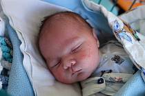 Václav Dvořák se narodil 16. 3. 2018. Jeho maminka Jiřina Dvořáková jej přivedla na svět v 8.02 h. Jeho porodní váha byla 3,71 kg. Žít bude v Českých Budějovicích.