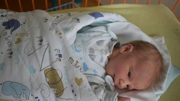 V Trhových Svinech bude poznávat svět novorozený Max Kohout. Rodičům Barboře Horákové a Petru Kohoutovi se narodil 14. 10. 2020 ve 14.20 h., vážil 3,54 kg.