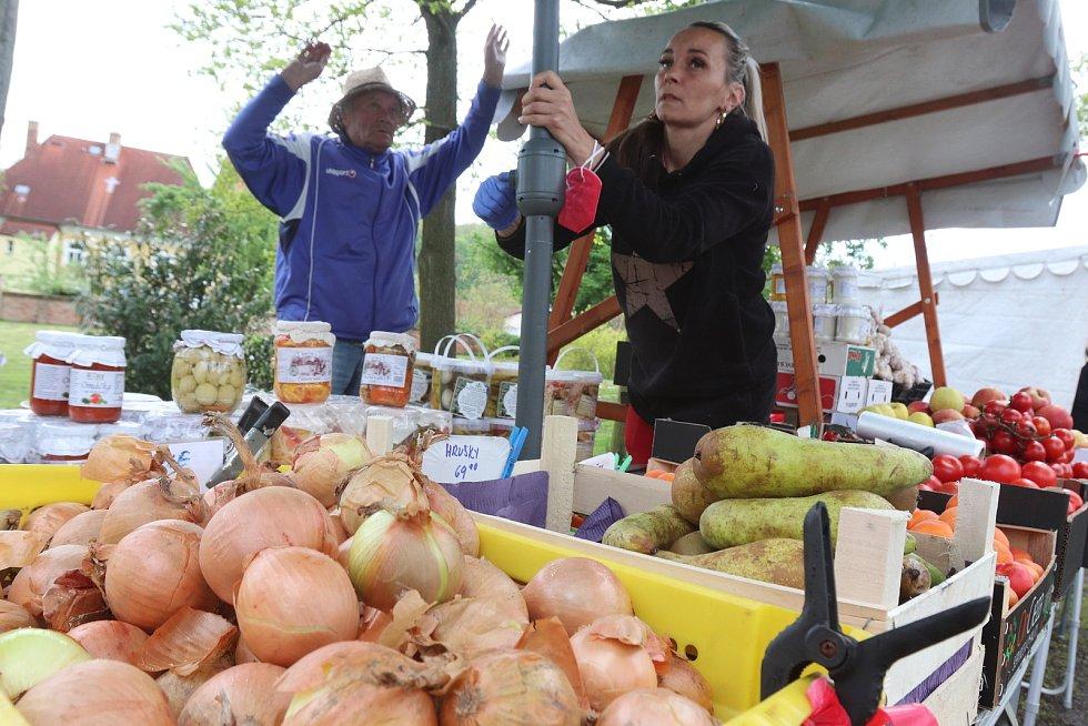 První jarní trh v Boršově nad Vltavou se konal na tradičním místě pod fotbalovým hřištěm v parku.