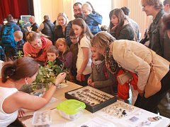 Terarijní burza v českobudějovickém spolkovém domě Slavie přilákala v sobotu dopoledne čtyři sta návštěvníků. Velkým hitem byli hadi, ještěři, brouci a také ježek.