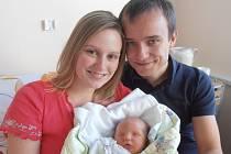 Dana Chlastáková a Milan Krsička jsou šťastnými rodiči prvního společného potomka. V neděli 13. 12. 2015 ve 21 hodin a 15 minut se jim narodila holčička Eliška Krsičková. Nová obyvatelka města České Budějovice se mohla po narození pochlubit váhou 3,19 kg.