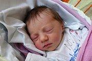 Lišov bude domovem pro novorozenou Annu Minaříkovou. Ta se rodičům Evě Bakulové a Martinu Minaříkovi narodila v českobudějovické nemocnici 24. 10. 2017 v 16.41 h. Její porodní váha byla 2,97 kilogramu.