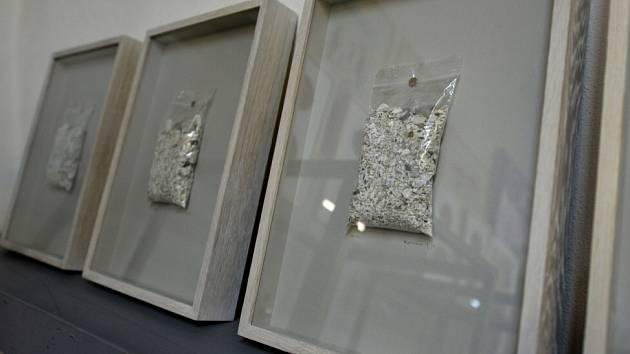 Obrazy z lidského popela vystavuje a prodává v Schiele Centru známý člen skupiny Ztohoven, umělec Roman Týc.