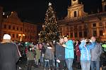 V Českých Budějovicích rozsvítili vánoční strom za symbolické asistence dětí.