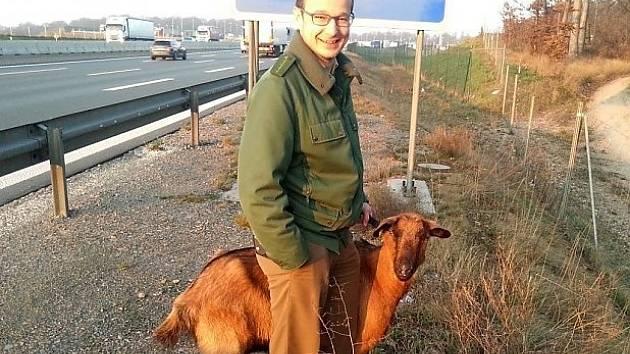 Koza maratonkyně.