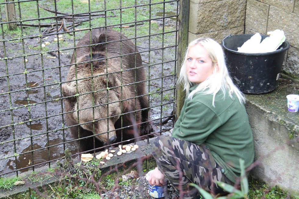 Krmení medvěda v zoo Dvorec u Borovan