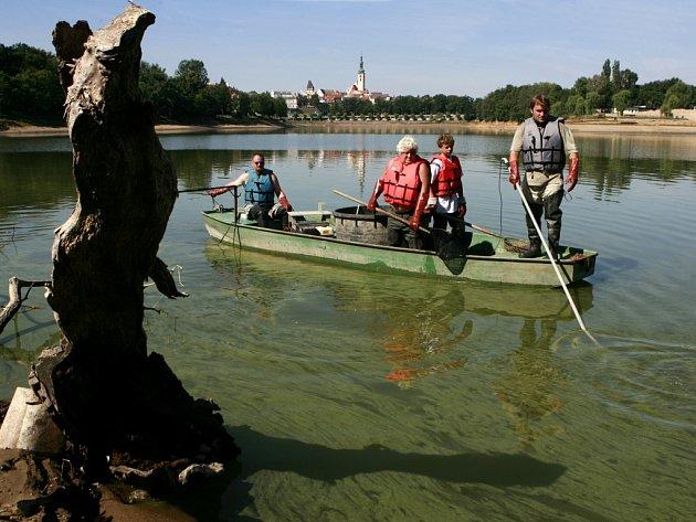 Na rybníku Jordán v Táboře začal výlov ryb. Nádrž se vypouští kvůli odbahnění, voda je v ní nepřetržitě 183 let. Jordán je nejstarší nádrží ve střední Evropě.