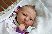 Šťastnými rodiči novorozené Adély Šírkové jsou manželé Miroslava a Petr Šírek. Holčička se jim narodila 17. 10. 2017, čtrnáct minut po desáté hodině dopoledne. Její váha byla 3,28 kilogramů. Žít bude rodina v Rudolfově.
