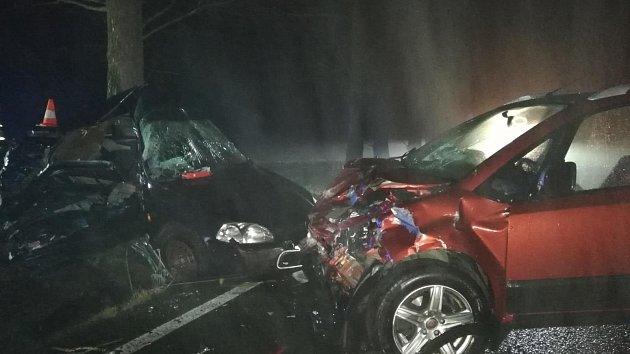 Tragická dopravní nehoda se stala v sobotu u Ledenic