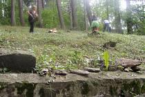 Zrušený židovský hřbitov v Hartmanicích.