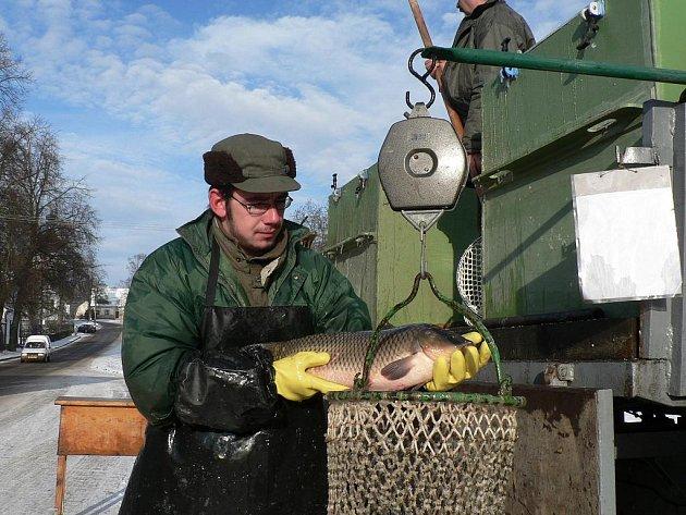 Za roky pojízdného prodeje už díky přesné evidenci novohradští rybáři snadno odhadnou zájem zákazníků. Například v Jílovicích za poslední tři roky bylo 30, 31 a 32 kupců a prodalo se 150, 151 a 154 kilogramů ryb.