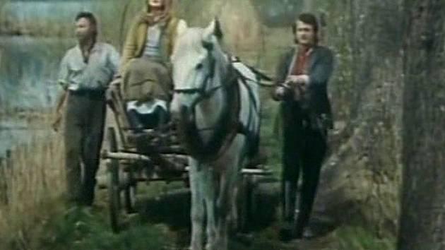 Bohumil Vávra, Jana Brejchová a Ivan Palúch táhnou vůz po hrázce mezi rybníky Nadějské soustavy na Třeboňsku.