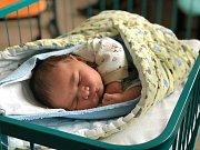 Michael Völfel se Michaele Sládkové a Michalu Völfelovi narodil 21. 9. 2017 v 8.31 h v českobudějovické nemocnici. Vážil 4,55 kg a měřil 51 cm. Vyroste v Hrdějovicích.