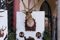 Muzeum lesnictví, myslivosti a rybářství Ohrada