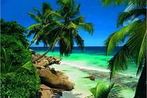 Na Seychelách to žije...