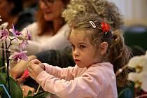 V Jihočeském muzeu si zájemci vyzkoušeli květinářskou práci.