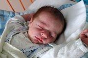V Borovanech prožije dětství Jakub Šuma. Svět poprvé spatřil 28. 3. 2017 ve 2.27 h, v ten okamžik vážil  3,61 kg. Šťastnou maminkou je Jana Petrovičová.