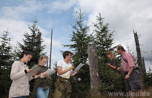 Studenti sledují růst chráněného lesa.