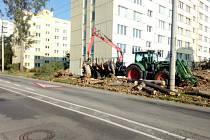 V jihočeské metropoli finišuje úklid polomů po nedávné vichřici. Napáchala škody v centru, na předměstích a třeba i v Českém Vrbném.