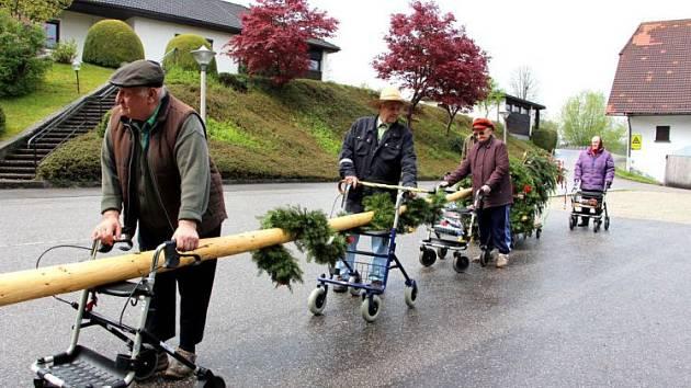 Senioři si odcizený strom vezou zpátky.