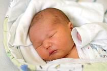 Markéta Postlová je maminkou novorozeného Jaroslava Postla. Na svět jej přivedla 3. 11. 2019 ve 20.17 h., vážil 3,71 kg. Vyrůstat bude v Šindlových Dvorech.