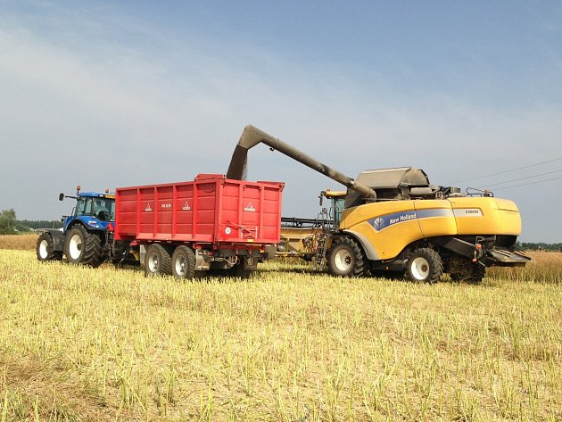 Zemědělské služby Dynín hospodaří přibližně na 4800 hektarech zemědělské půdy.