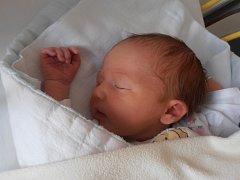 V pondělí 8. 6. 2015 přesně 8 minut po 9. hodině se narodila Anna Šiková. Prvorozená Anička se mohla pochlubit porodní váhou 3,22 kg a svoje dětství bude prožívat v Českých Budějovicích.