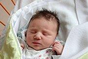 Anežka Filípková se Nikole a Pavlovi Filípkovým narodila v českobudějovické nemocnici 20. 9. 2017 v 8.17 h. Vážila 3,69 kg. Vyrůstat bude v Sedlíkovicích.