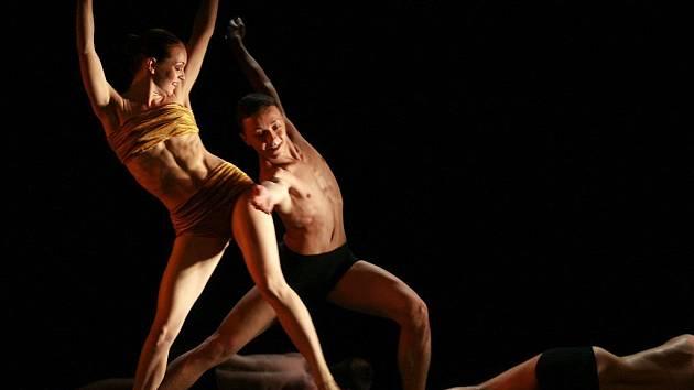 Balet Jihočeského divadla uvede 8. dubna premiéru komponovaného večera Bolero, v němž lidé uvidí pět choreografií.