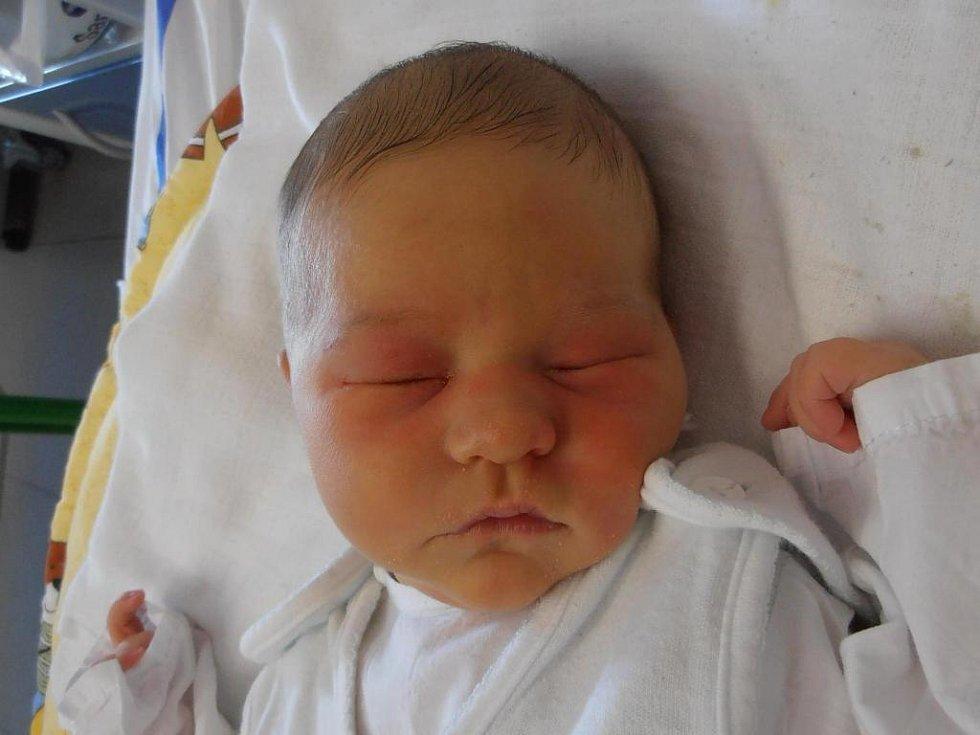 Lenka a Lukáš Koubovi jsou pyšnými rodiči Sofie Koubové. Holčička poprvé spatřila tento svět v neděli 4.3.2012 ve 12 hodin a 46 minut. Po narození vážila 3,42 kg. Své dětství bude prožívat v Českých Budějovicích.