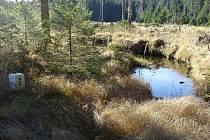 Na titulce knihy najdete Hraniční kámen 4/8 u bavorské osady Schnellenzipf, počátek přechodové trasy Josefa Hasila