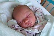 Sedmiletý Vašík se těšil na narození své sestřičky Vandy Novákové. Dočkal se 23. 1. 2018 v 11.42 h. Vanda vážila 3,01 kg, jejím domovem jsou Češnovice.