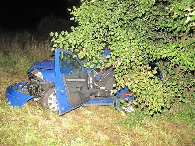 Rychlá jízda a náraz do stromu se minulé pondělí staly osudnými 43letému řidiči Škody Octavie v Roudné na Táborsku.