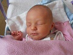 V Českých Budějovicích bude prožívat dětství Andrea Kohoutová. S porodní váhou 3,03 kg se vyklubala na  svět přesně ve 2 hodiny a 54 minut v pondělí 24.2.2014.