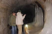 Tunel skrývá stovku netopýrů.
