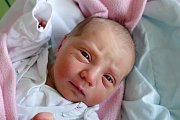 Do Lišova odjela z budějovické nemocnice s maminkou Lucii Flíčkovou novorozená Sofie Flíčková. Na svět přišla 15. 10. 2018 v 15.17 h. Váha po porodu ukazovala 3,47 kg.