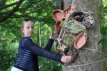 Vezměte děti do pohádkového lesa. Ilustrační foto
