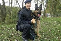 Podpraporčice Lenka Pražáková je jednou ze dvou psovodek jihočeské policie. Na snímku je s ovčákem Izaakem.