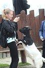 Integrovaný záchranný systém se představil v sobotu odpoledne v zoologické zahradě Ohrada v Hluboké nad Vltavou.