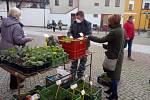 Na Piaristické náměstí v Českých Budějovicích se ve čtvrtek 15. dubna 2021 po pauze způsobené koronavirem vrátil tradiční trh.